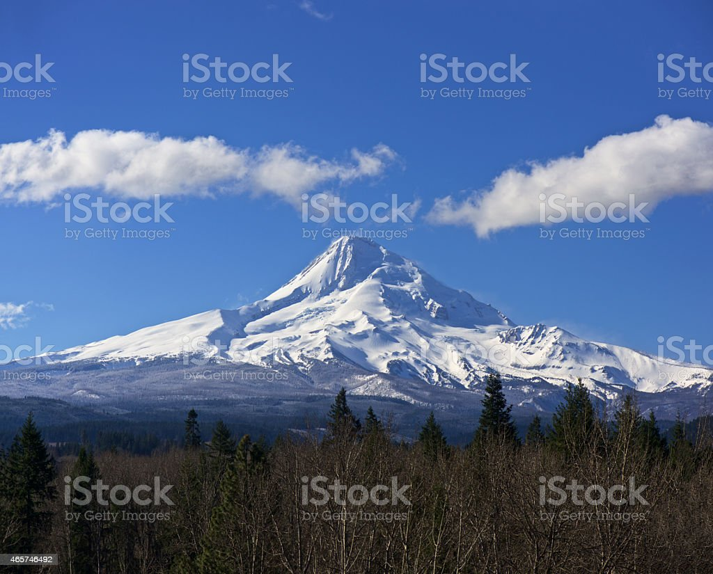 Mt Hood Oregon with Snow Trees Blue Sky North Side stock photo