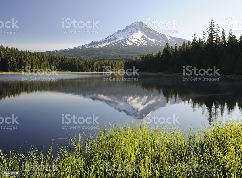 Mt Hood Reflection in Trillium Lake stock photo