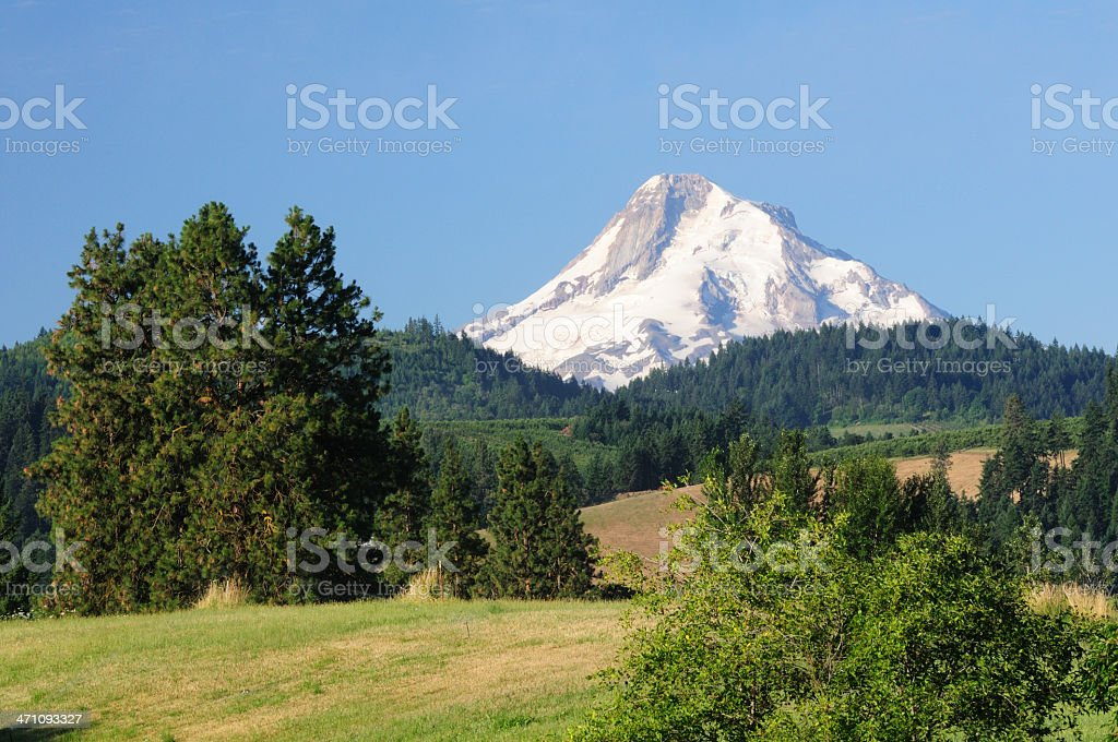 Mt Hood View royalty-free stock photo