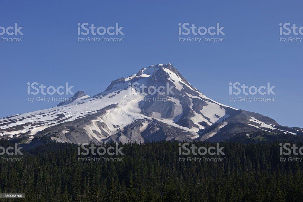 Mt. Hood's Wild Side stock photo