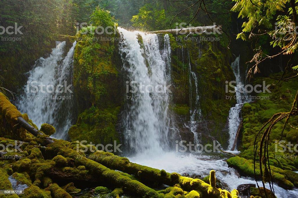 Mt. Jefferson Waterfall stock photo
