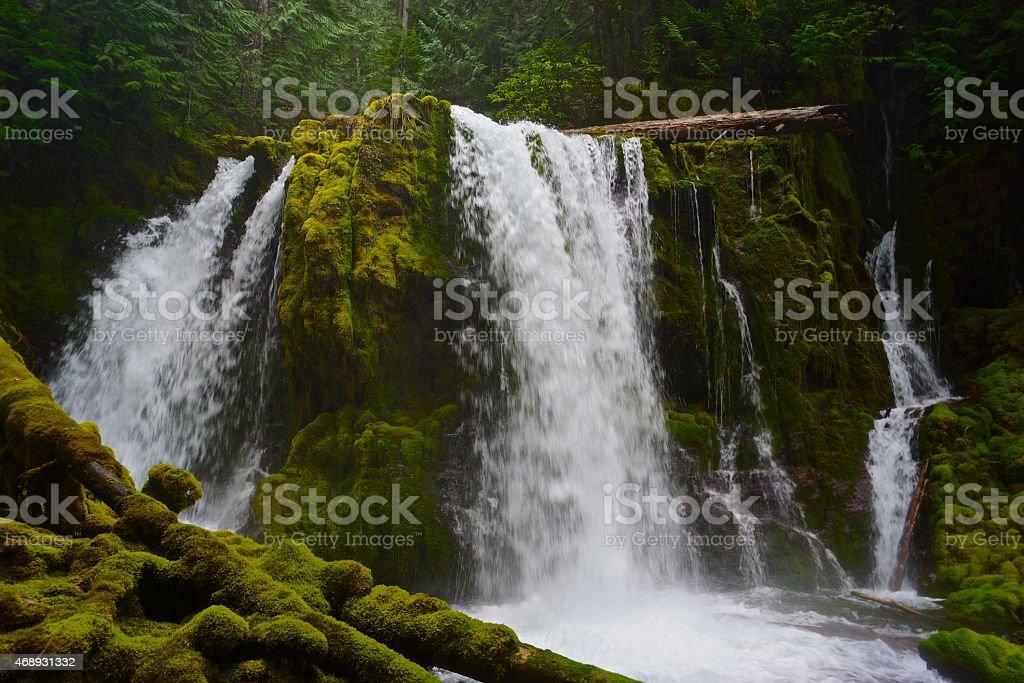 Mt. Jefferson Wild Waterfall stock photo