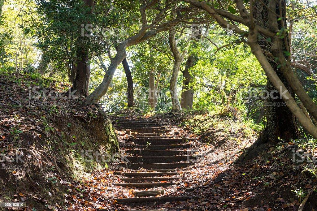 Mt. Kanuki hiking route stock photo