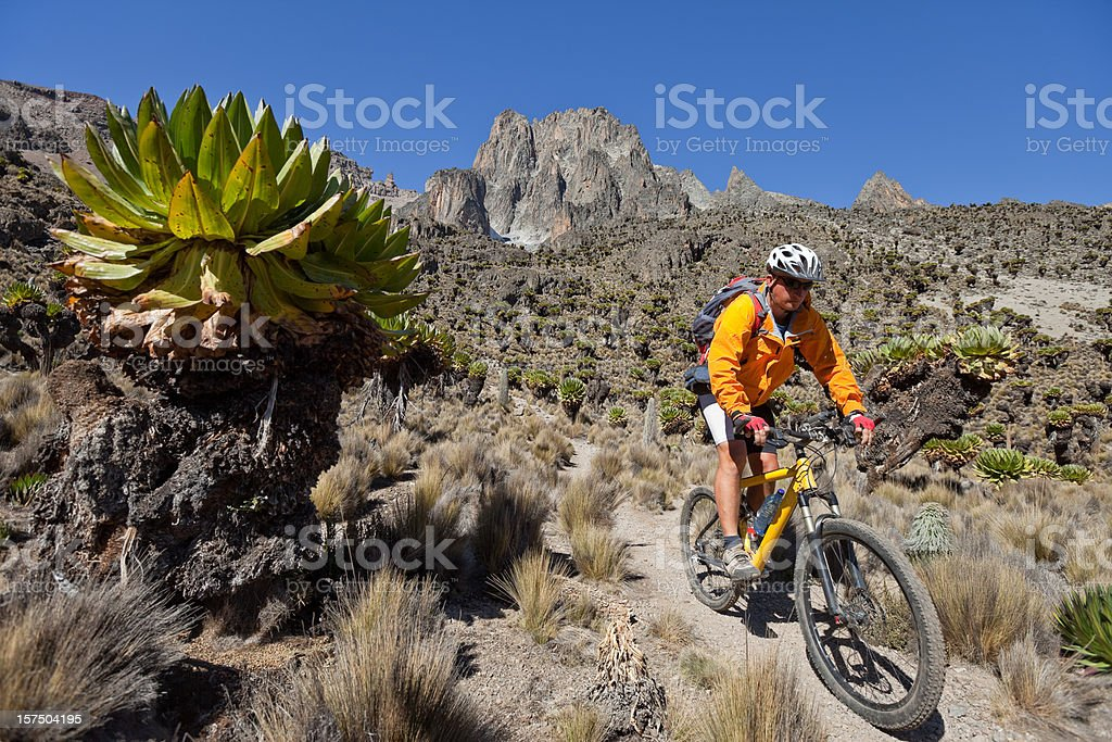 Mt. Kenya downhill royalty-free stock photo