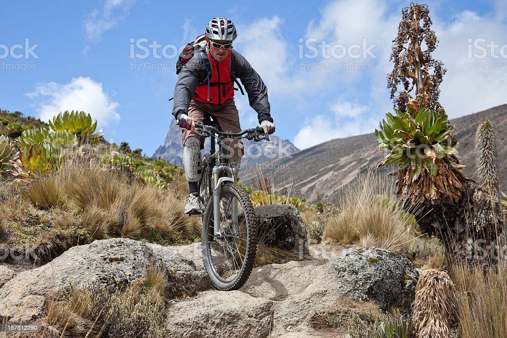 Mt. Kenya step royalty-free stock photo