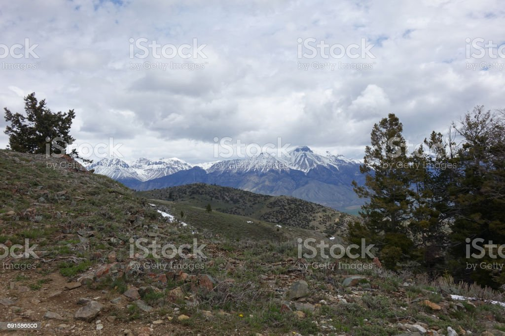 Mt. McCaleb from White Knob Mountains stock photo
