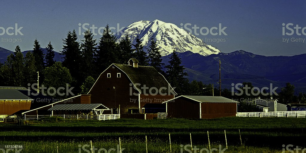 Mt Rainier and red barn royalty-free stock photo