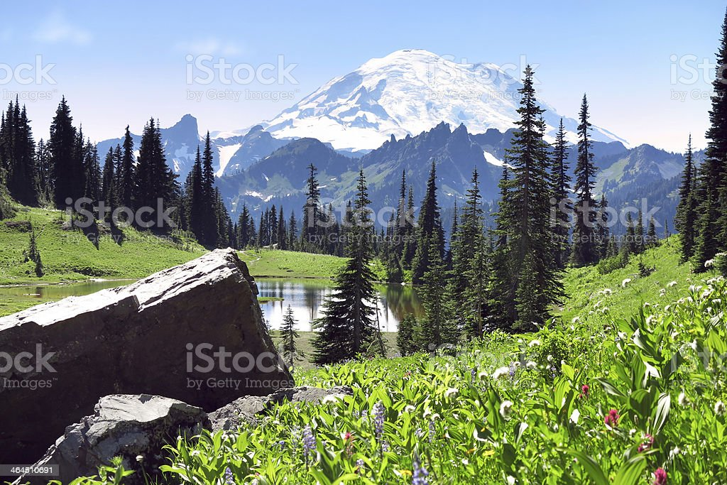 Mt. Rainier in Summer royalty-free stock photo