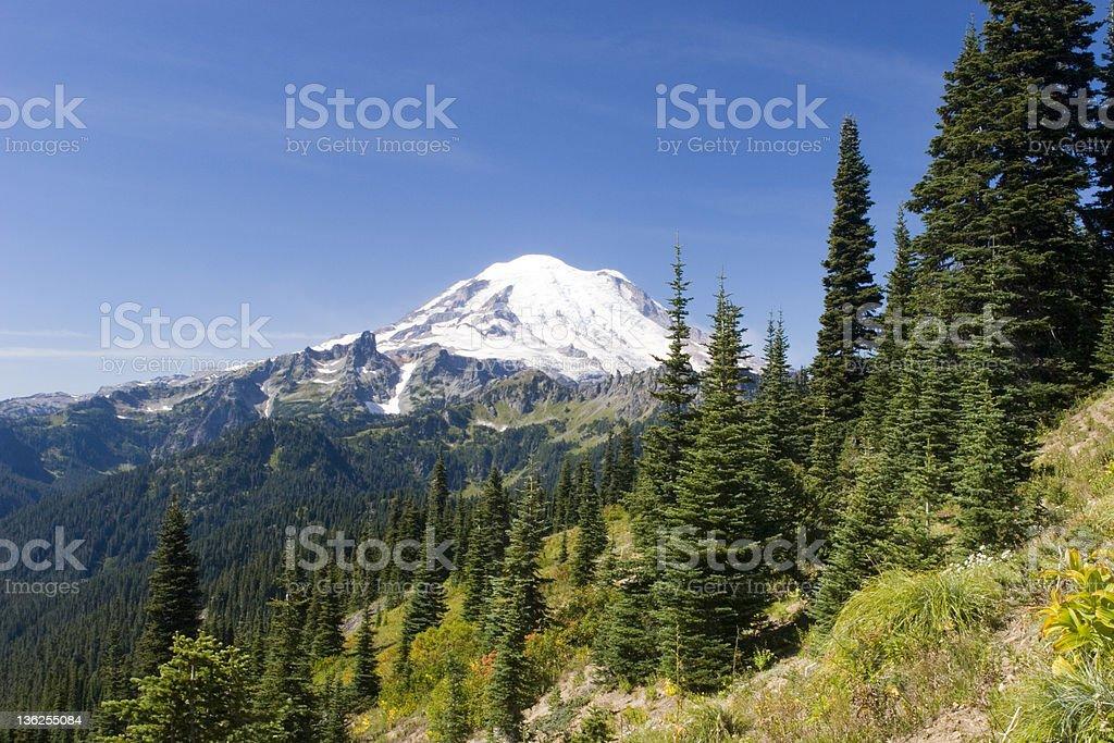 Mt. Rainier Naches Peak Trail royalty-free stock photo