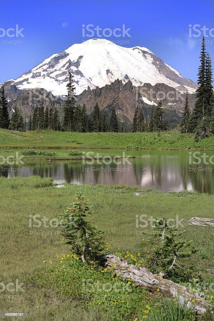 Mt. Rainier National Park royalty-free stock photo