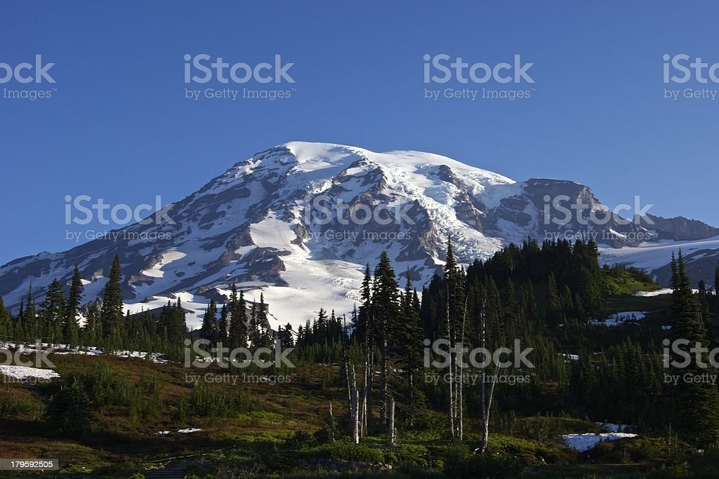 Mt. Rainier Paradise stock photo