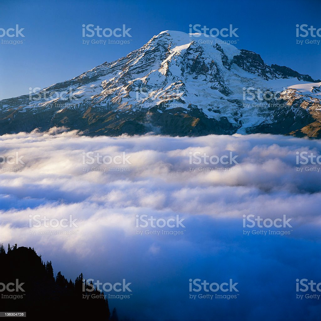 Mt. Rainier royalty-free stock photo