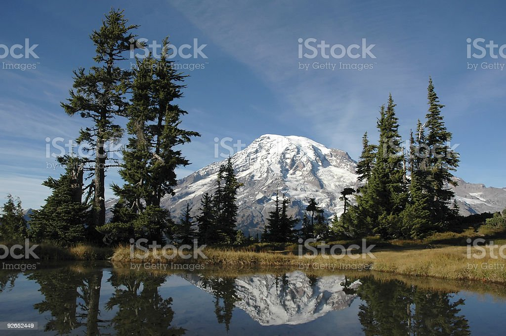 Mt. Rainier reflection royalty-free stock photo