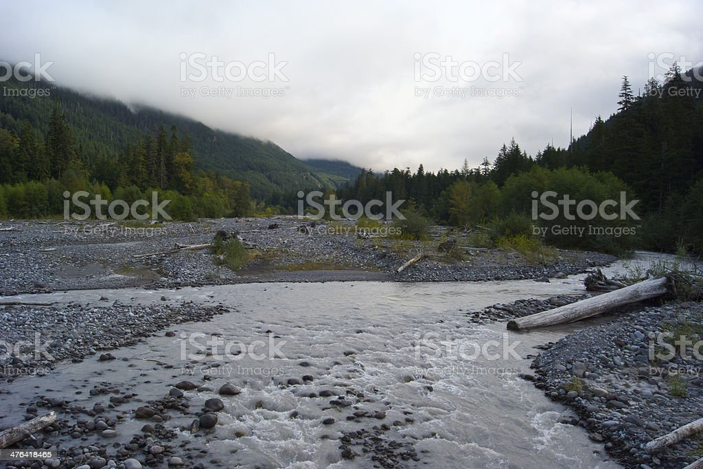 Mt. Rainier's Carbon River stock photo