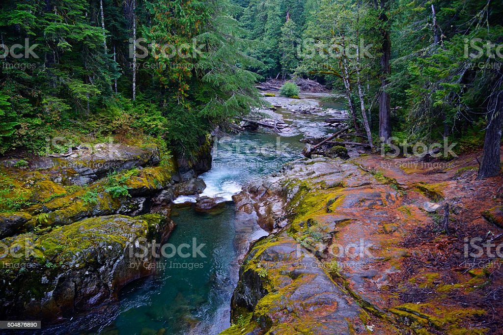 Mt. Rainier's Green River stock photo