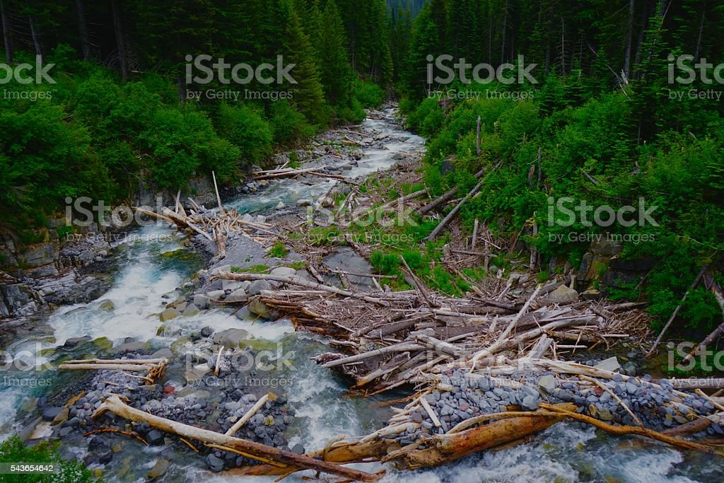 Mt. Rainier's Stevens Creek stock photo
