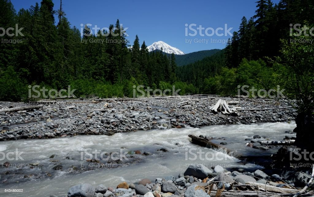 Mt. Rainier's Tahoma Creek stock photo