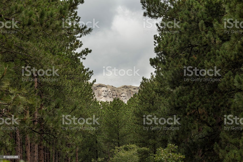 Mt. Rushmore Forest View stock photo