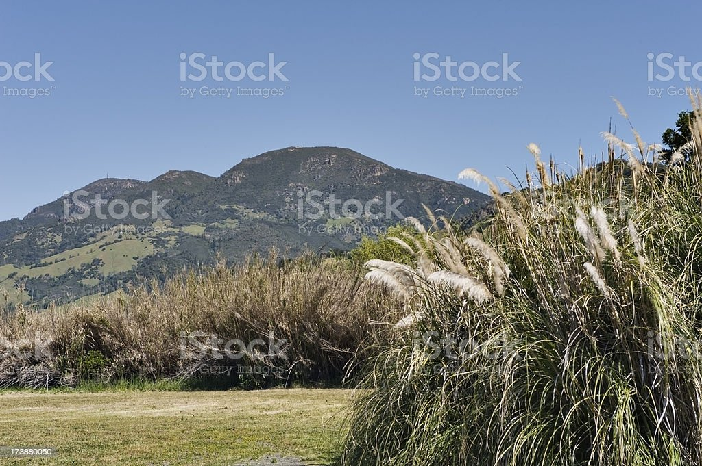 Mt Saint Helena Napa Valley View stock photo