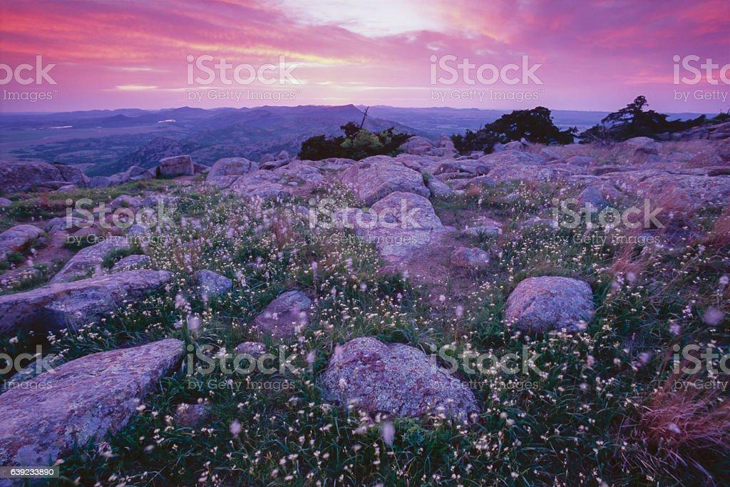 Mt. Scott Sunset and Wild Hyacinth, Wichita Mtns., Oklahoma stock photo