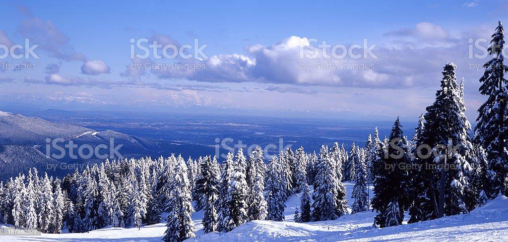 Mt. Seymour royalty-free stock photo