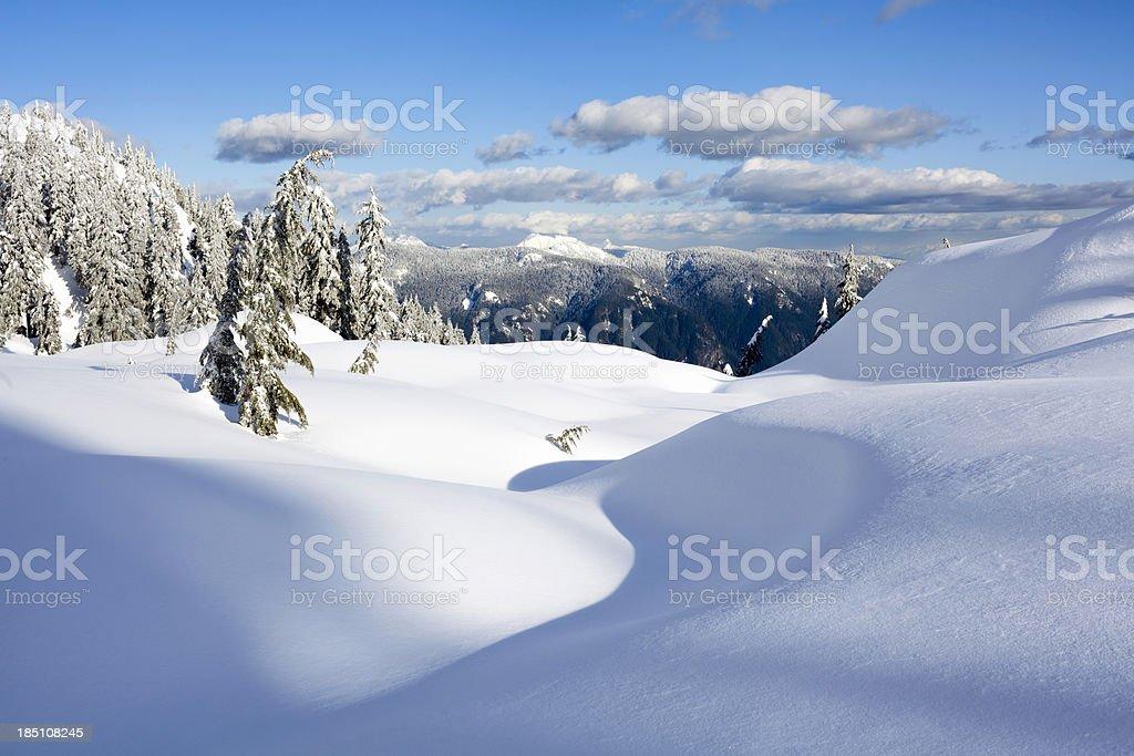 Mt. Seymour Winter Paradise stock photo
