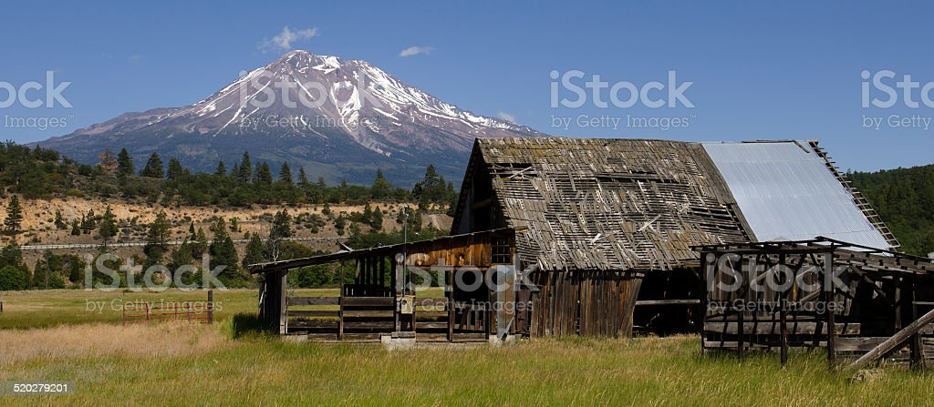 Mt Shasta stock photo