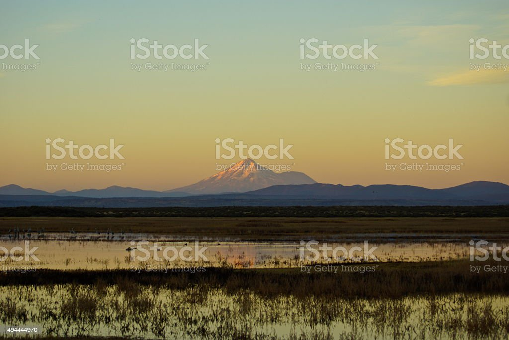 Mt. Shasta Wetlands stock photo