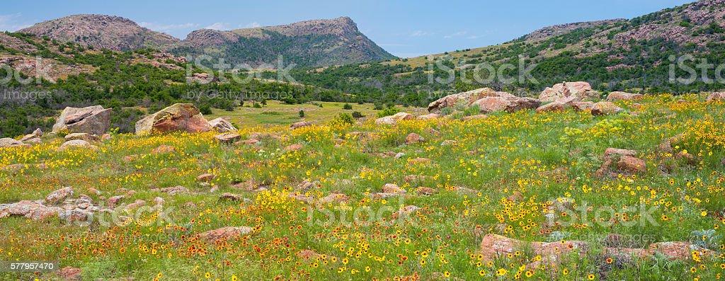 Mt. Sheridan and May Wildflowers, Wichita Mountains, Oklahoma stock photo
