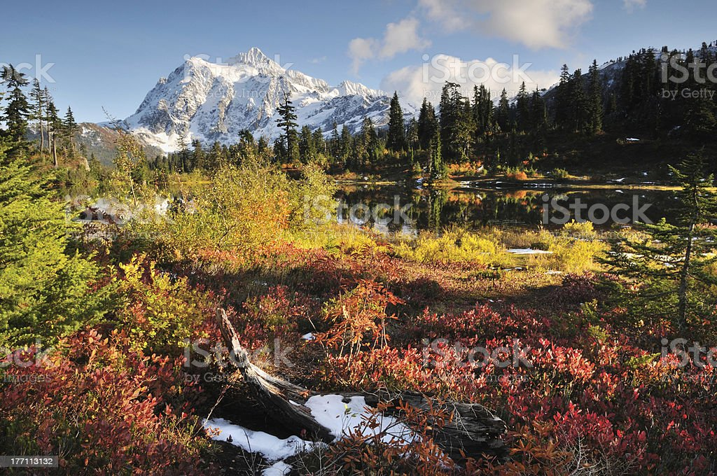Mt. Shuksan and Picture Lake in Autumn stock photo