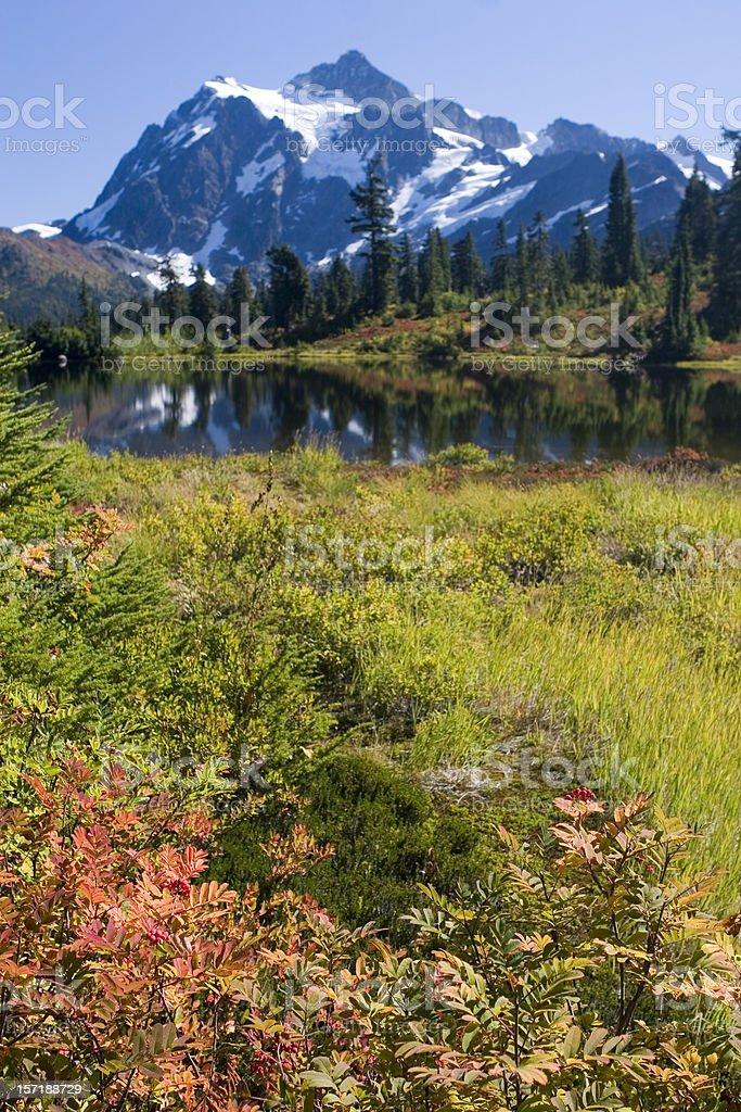 Mt Shuksan in Autumn royalty-free stock photo