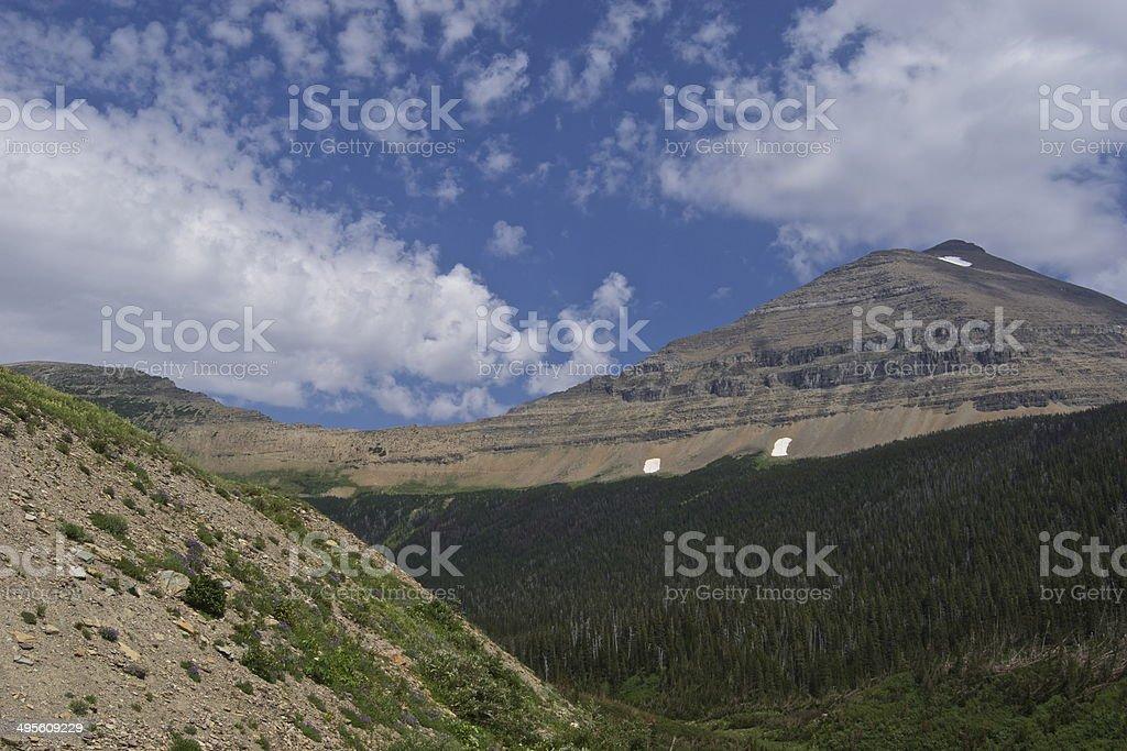 Mt. Siyeh Wild stock photo
