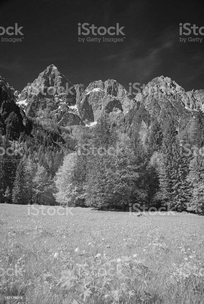 Mt. Spik from Jasenje - infrared royalty-free stock photo