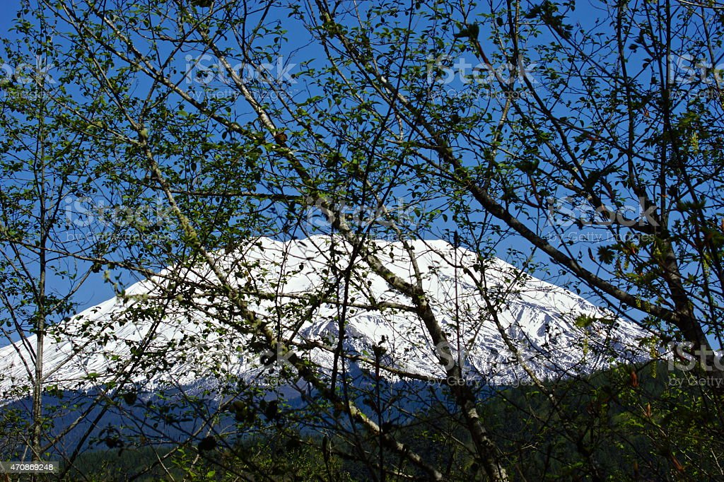 Mt. St. Helens Stealth stock photo