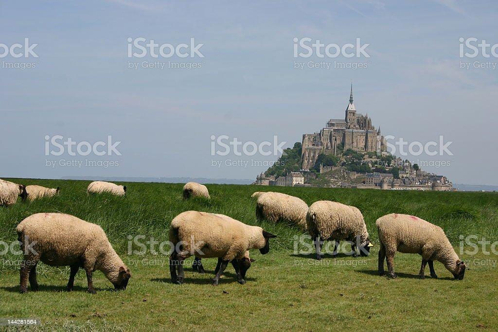 Mt. St. Michel stock photo