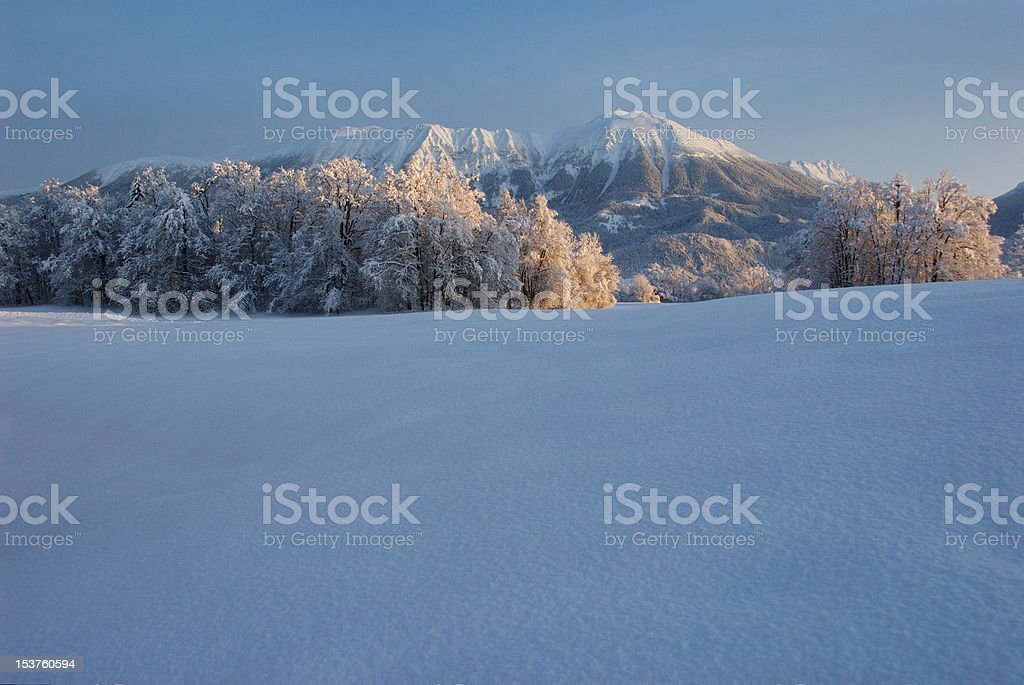 Mt. Stol in the winter royalty-free stock photo