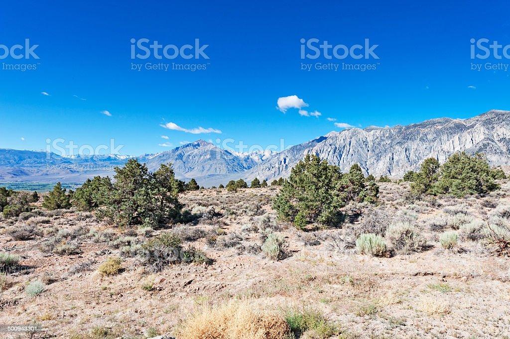 Mt Tom and Desert View stock photo