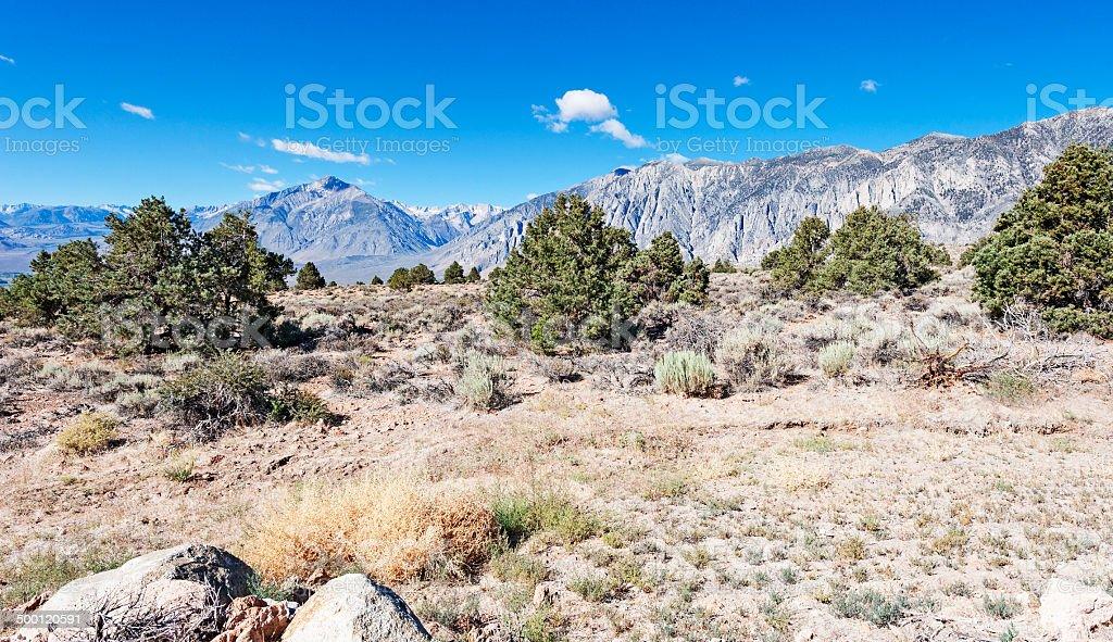 Mt Tom Sierra Nevada stock photo