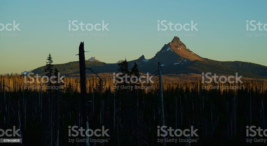 Mt. Washington Gold stock photo