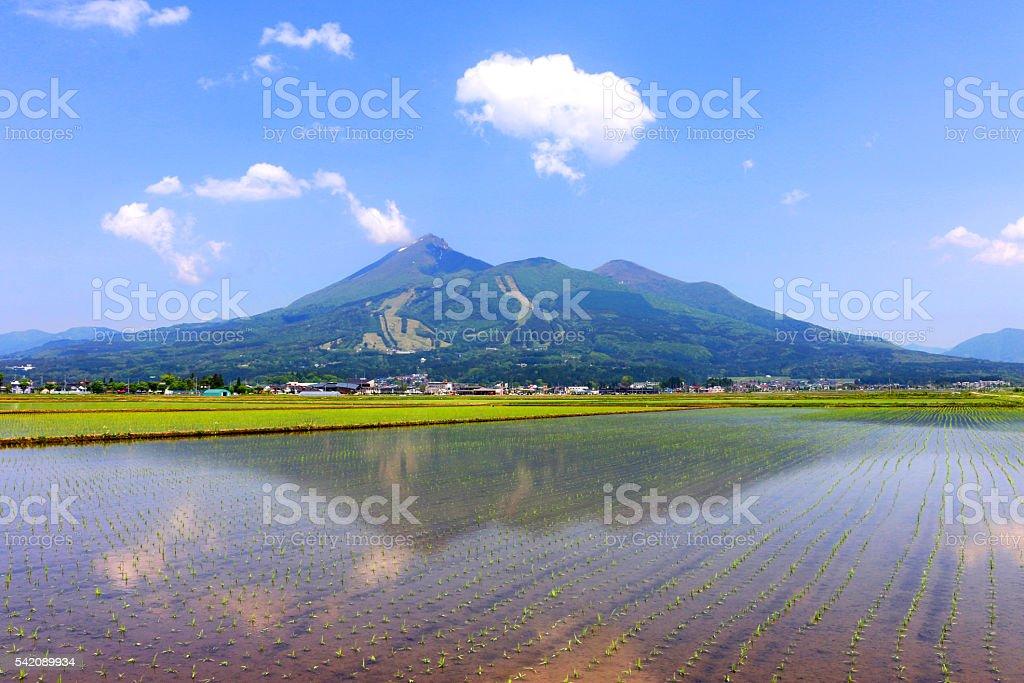 Mt.Bandai stock photo