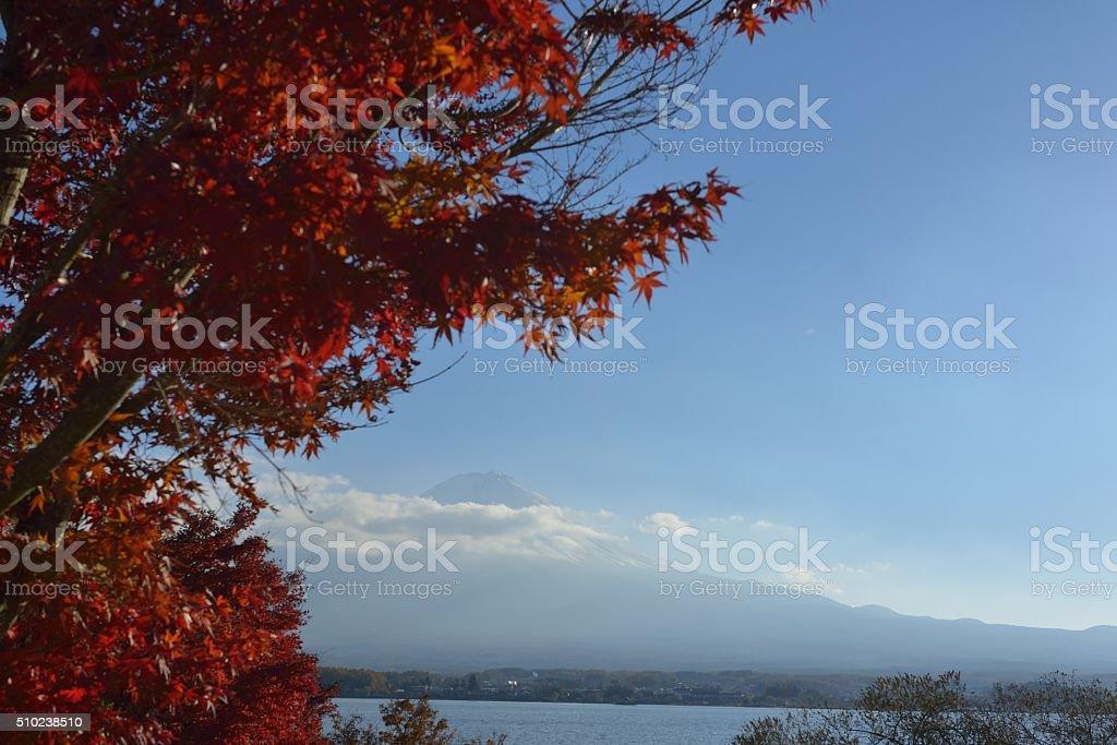 MT. Fuji e outono folhas foto de stock royalty-free