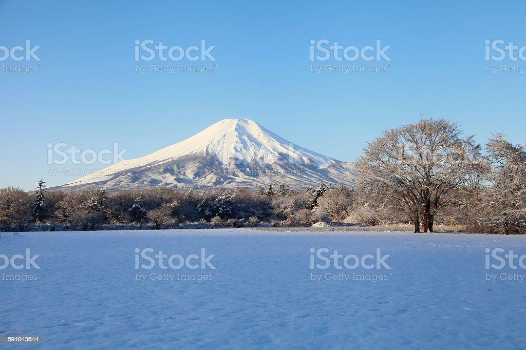 Mt.Fuji and snowy world stock photo