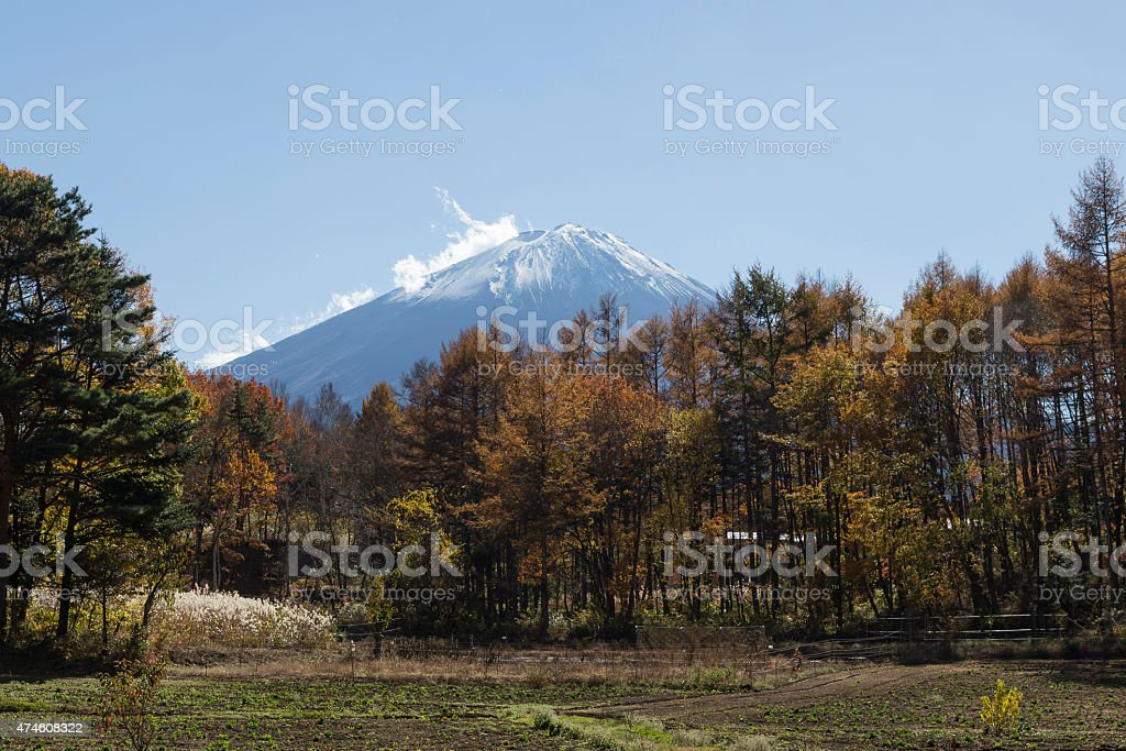 Mt.Fuji in autumn, Japan stock photo