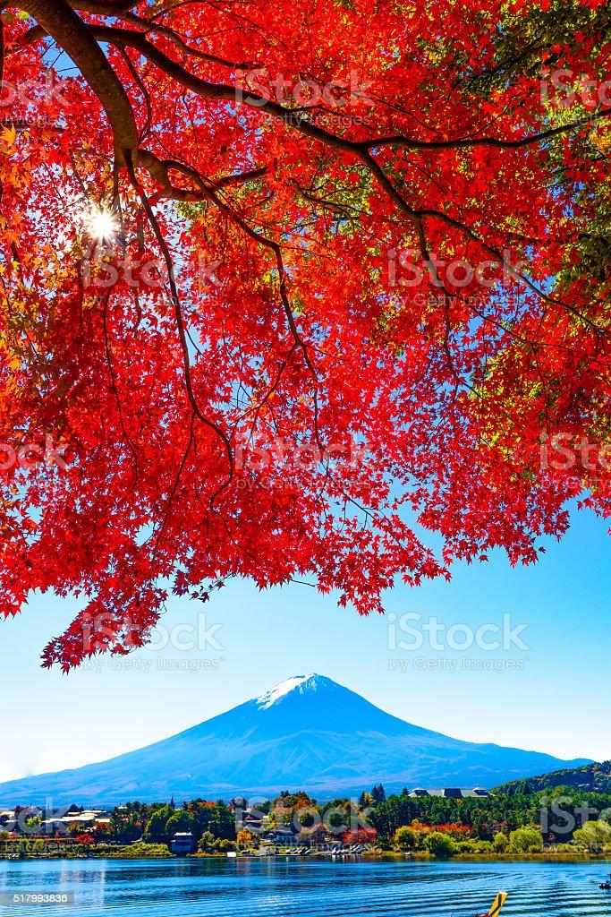 Mt.Fuji in autumn stock photo