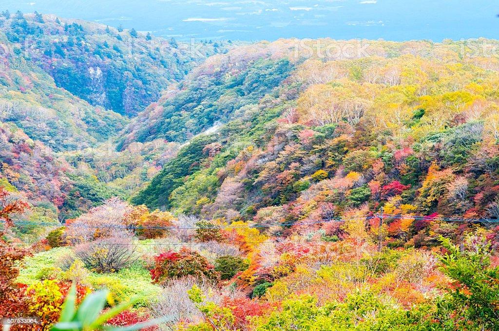 Mt.Nasu,tochigi,tourism of japan autumn stock photo
