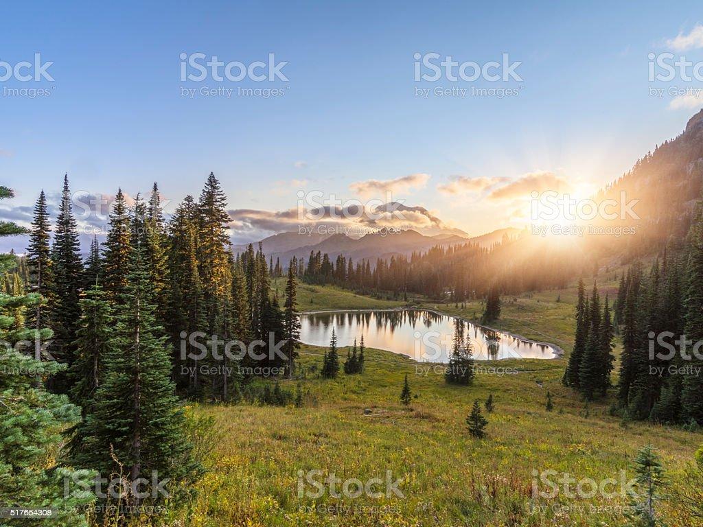 MT.Rainier in sunset stock photo