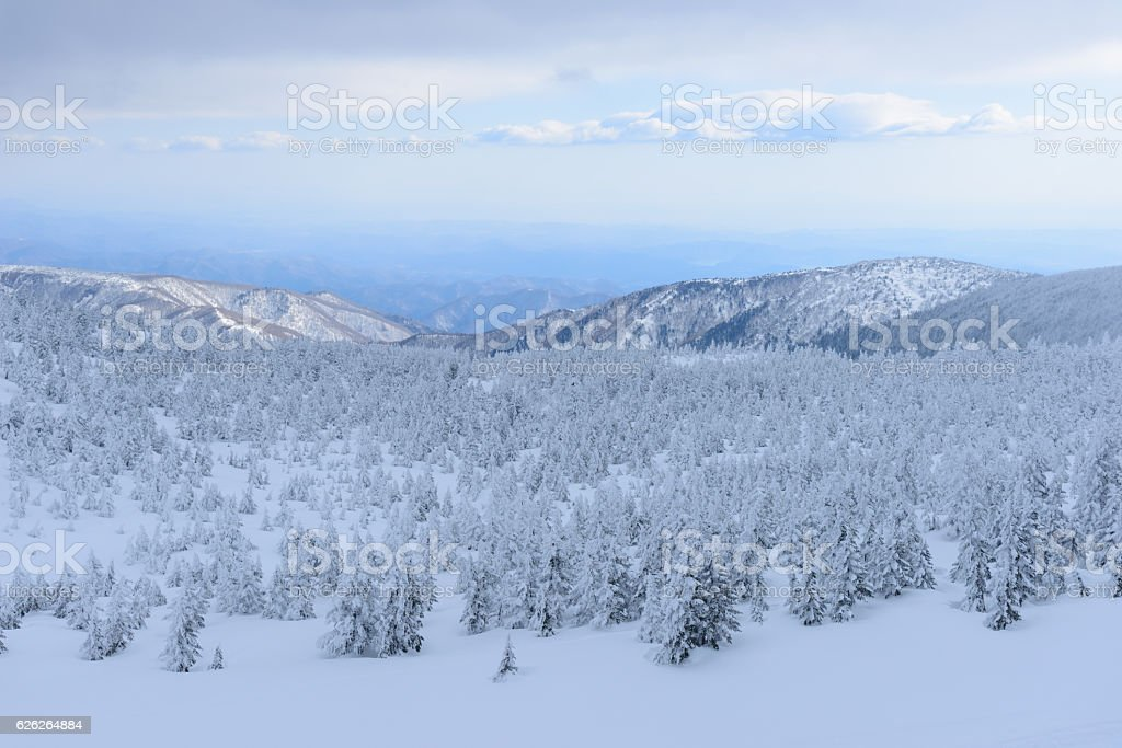 Mt.Zao in winter in Gifu, Japan stock photo