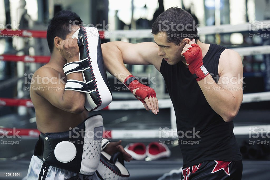 muay thai boxing stock photo