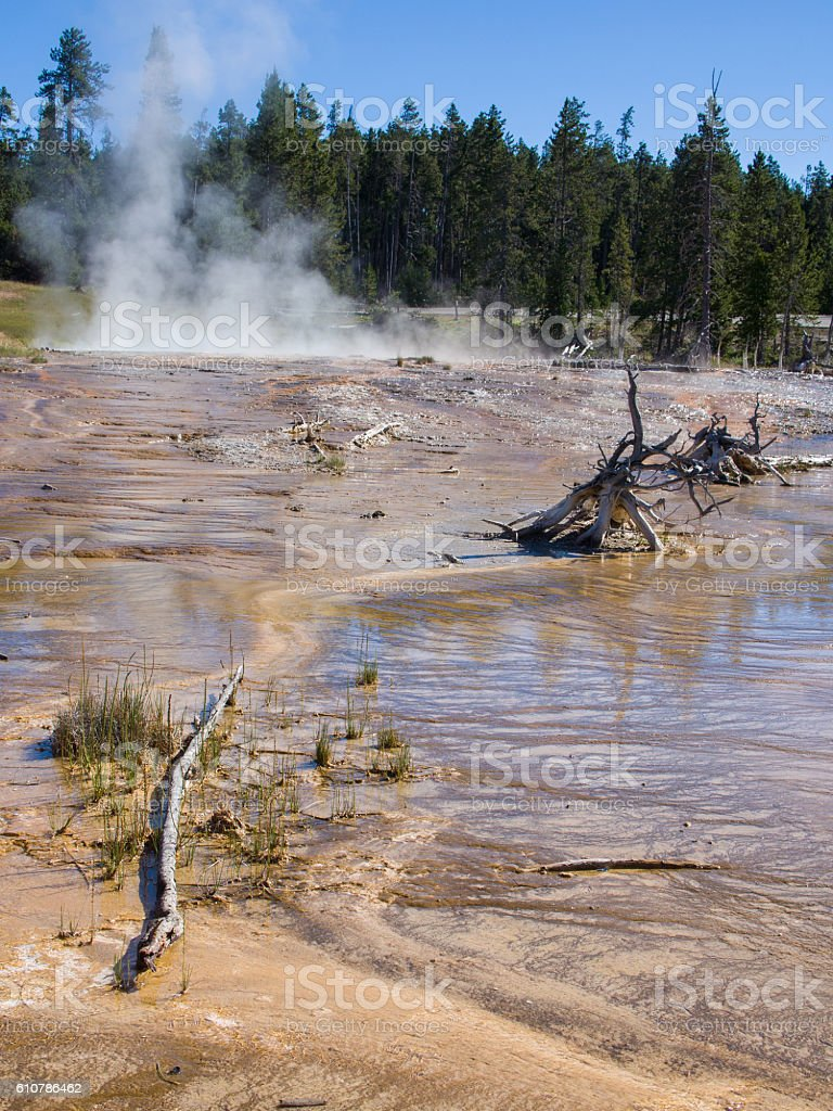 Mud and geysers in Yellowstone stock photo