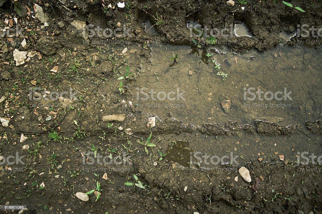 Mud and water texture stock photo